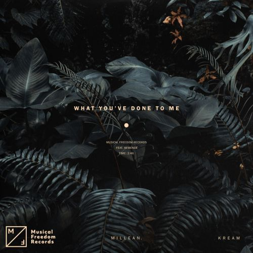 Mp3: Kream & Millean. – What You've Done To Me Ft. Bemendé